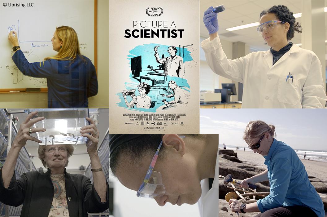 Picture a Scientist - les femmes dans les sciences